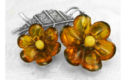 Natural World Amber Jewelry Collection by Andzia's Amber